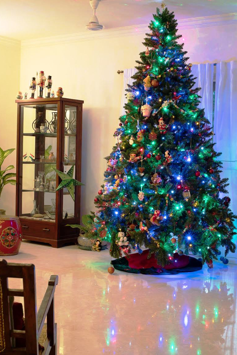 Christmas Tree In India.Santastores